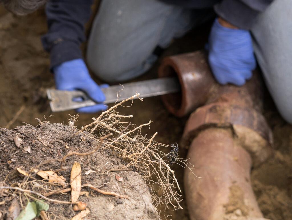 sewer line repair replacement
